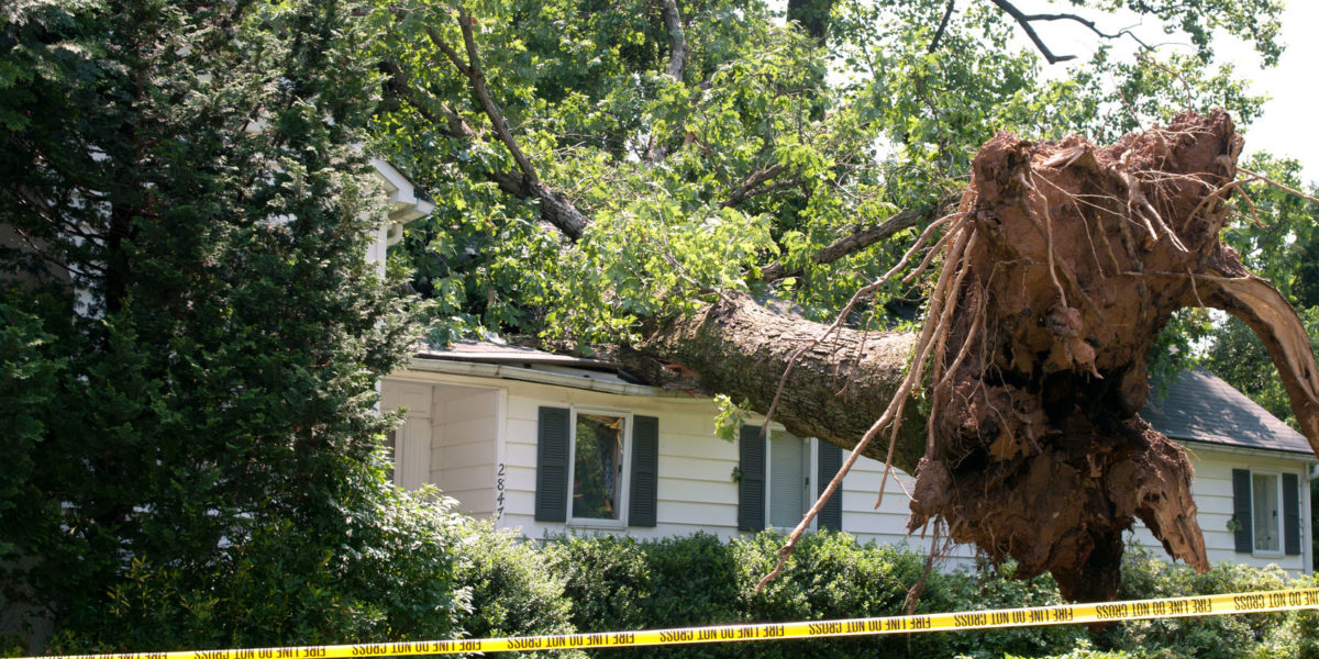 From What Storm Damage Are You Covered?